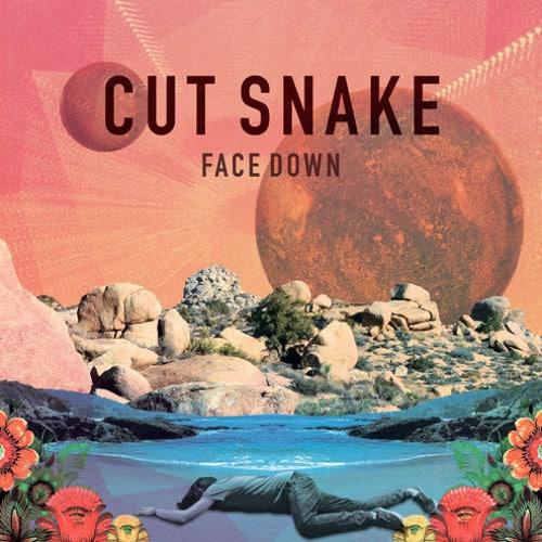 Cut Snake - Face Down (Jad & The Ladyboy Remix)
