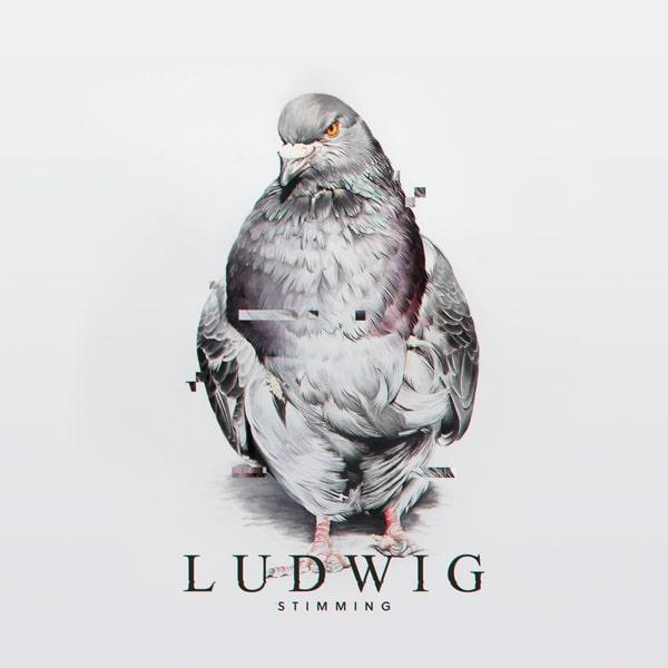 Stimming - Ludwig