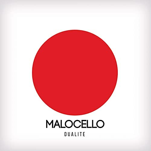 Malocello The Party Is Beginning Dualite